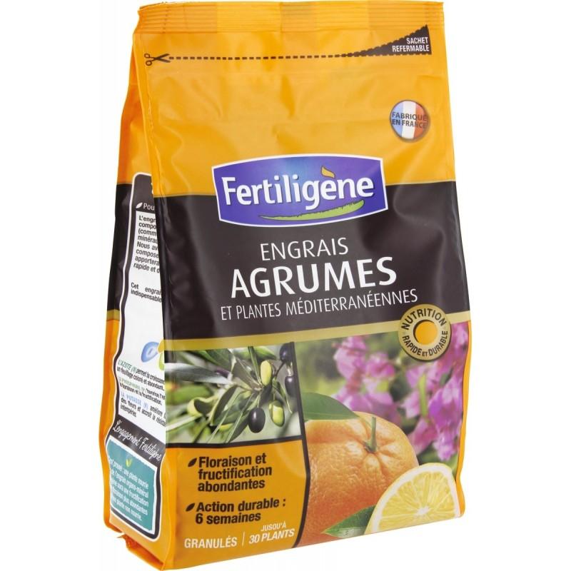 Engrais agrumes