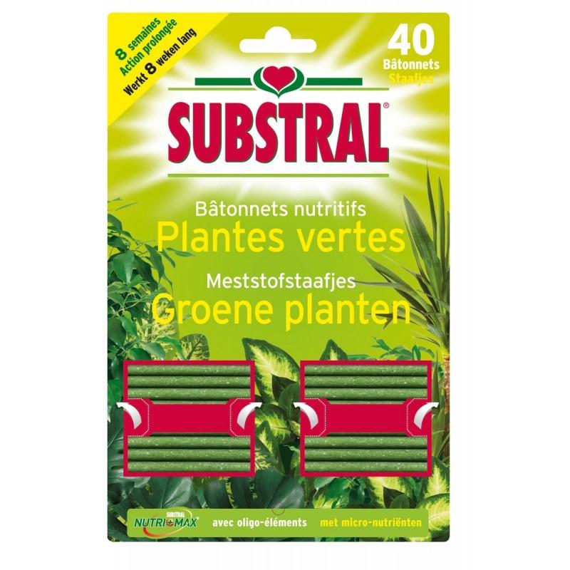 Bâtonnet nutritif plantes vertes