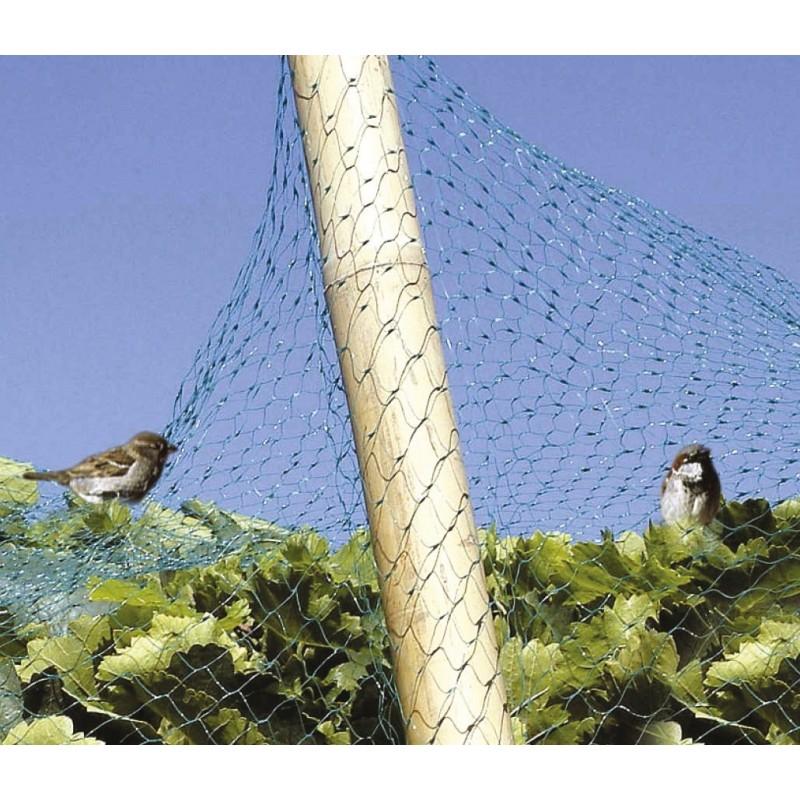 Filet vert anti-oiseaux