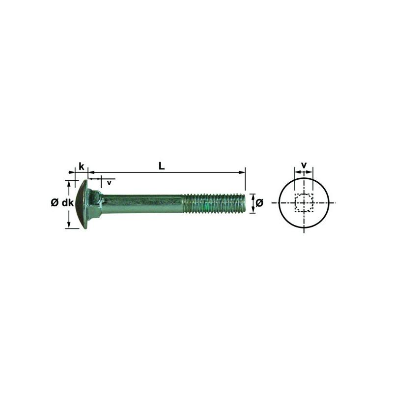 VIS TRCC 6X30 INOX A2 DIN603 (100)