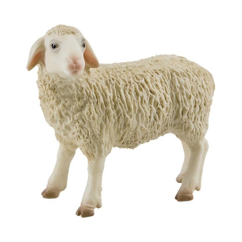 Mouton B62320