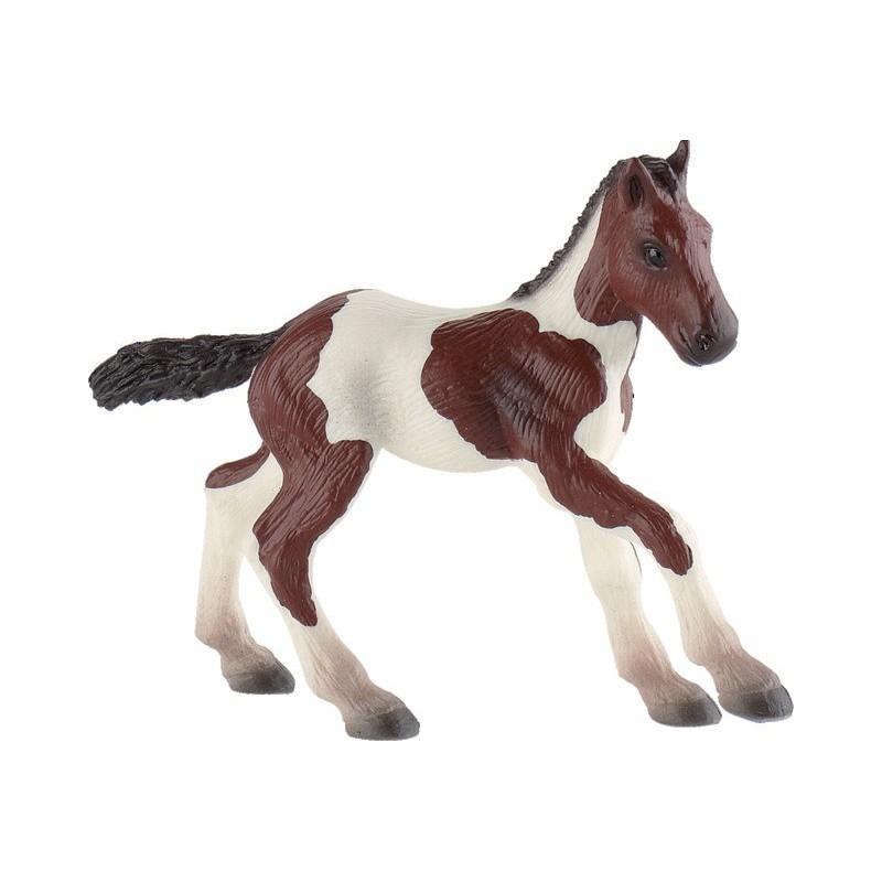 Poulain Paint Horse B62678