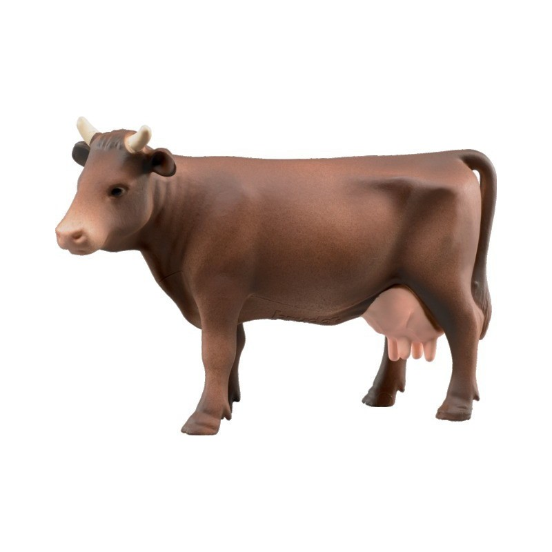 Vaches marrons BR02308
