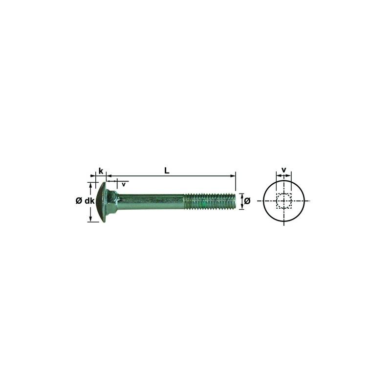 VIS TRCC 10X30 INOX A2 DIN603 (50)