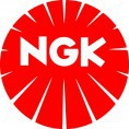 Marque : NGK